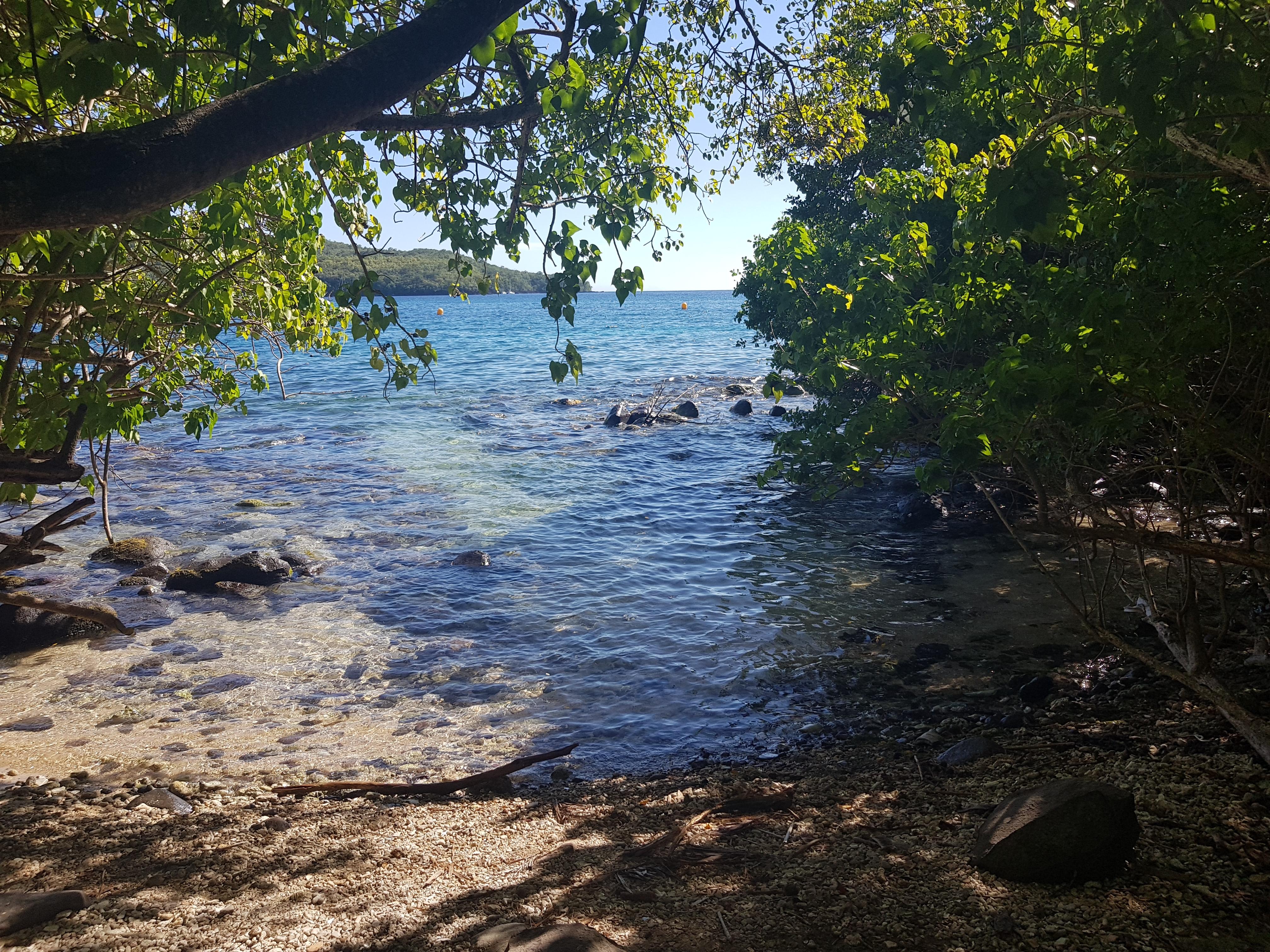 Sentier sous marin Cap Salomon Martinique