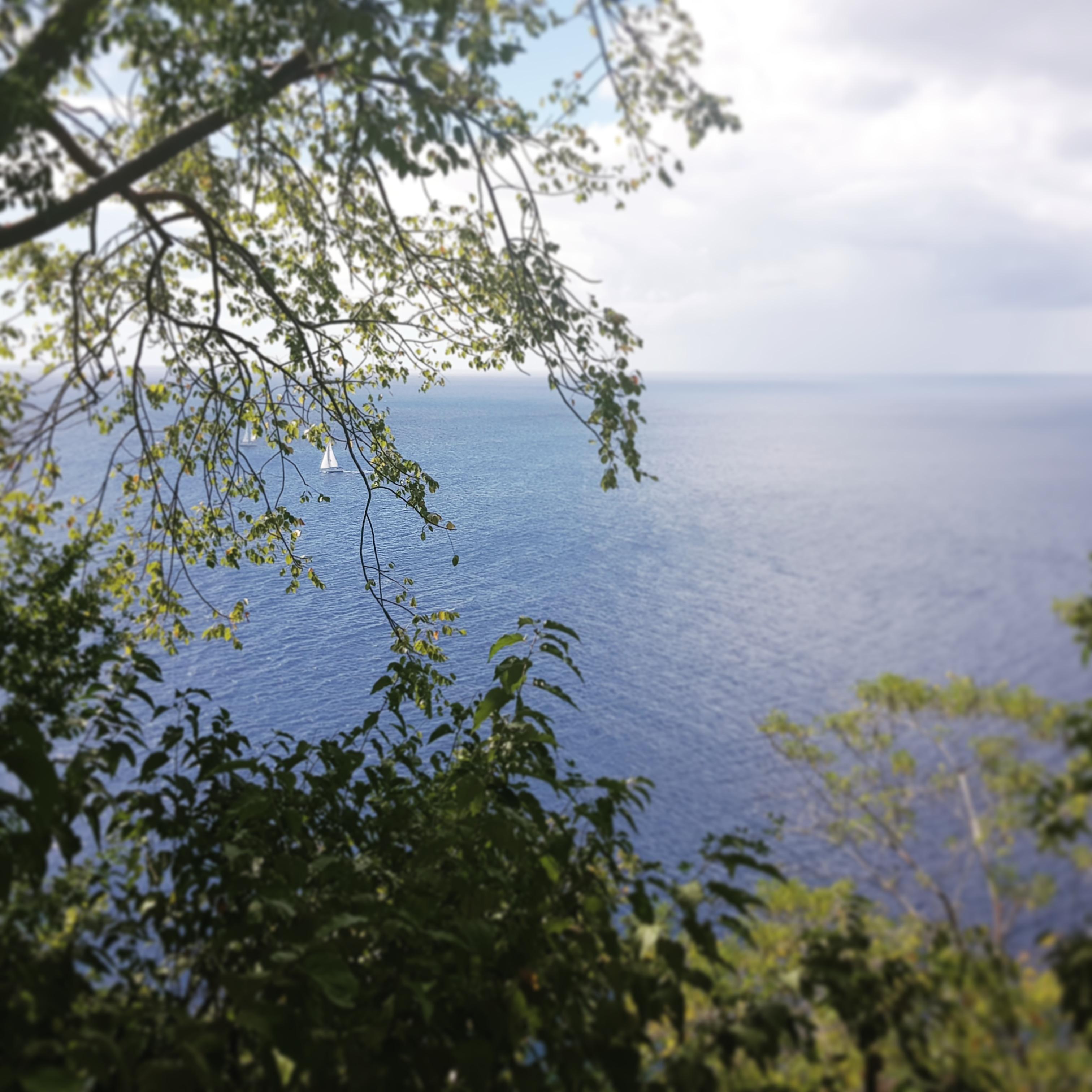 Ruines bataille militaire cap salomon martinique