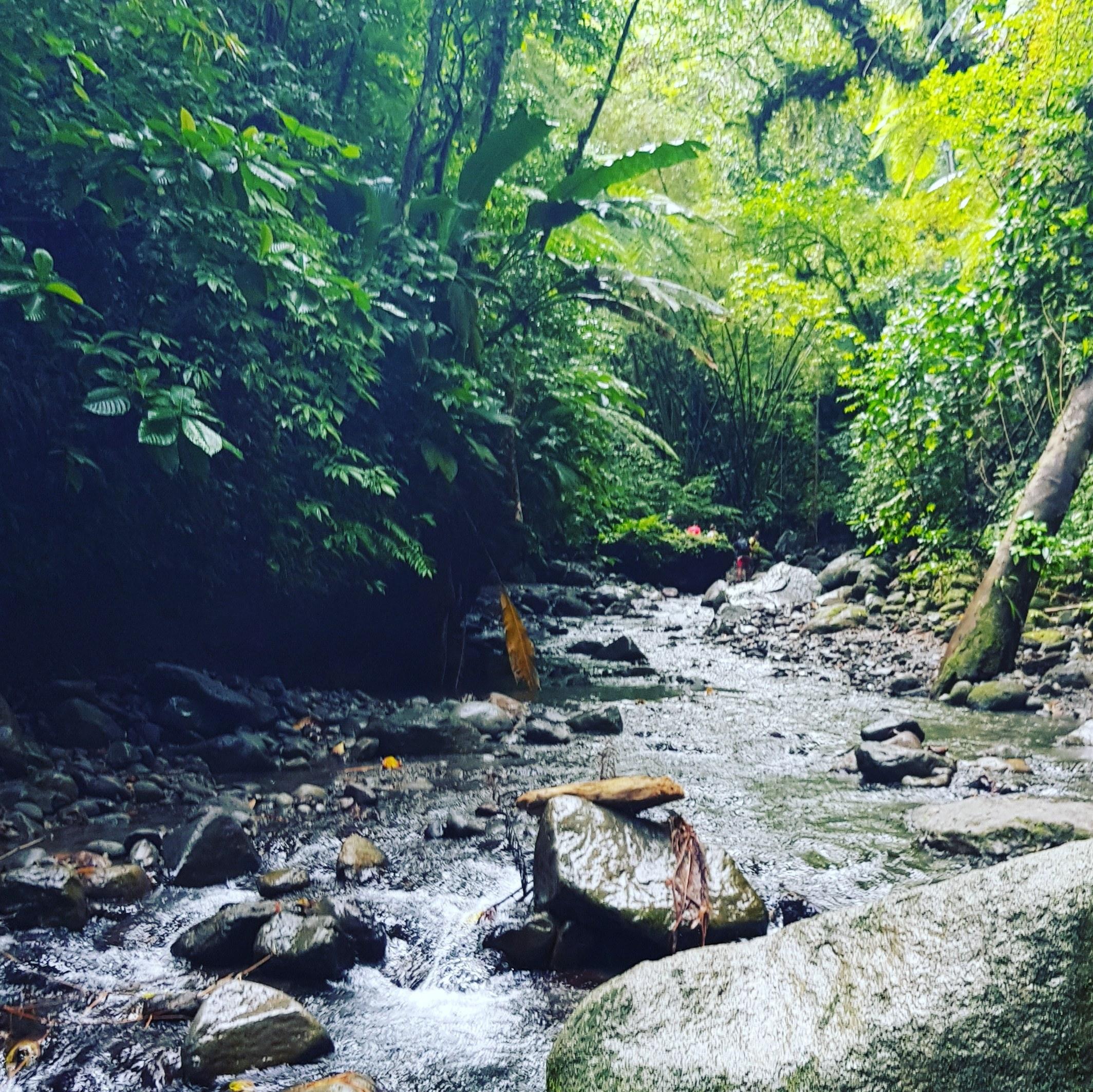 Cascade Dany en Martinique