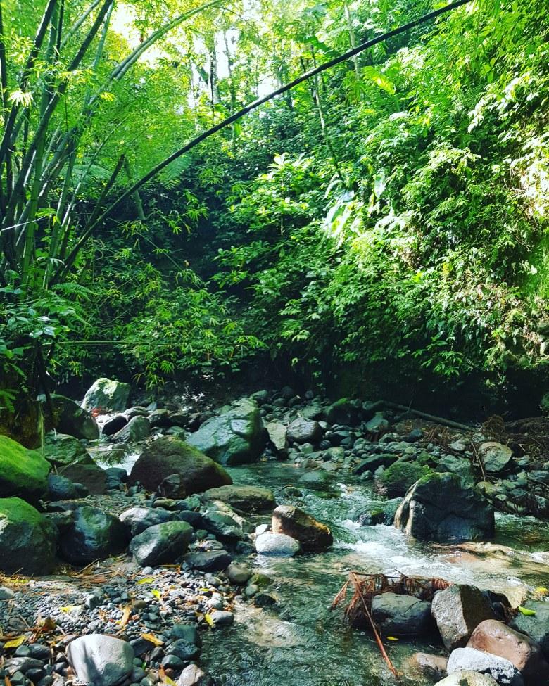 Cascade Dany Martinique randonnée