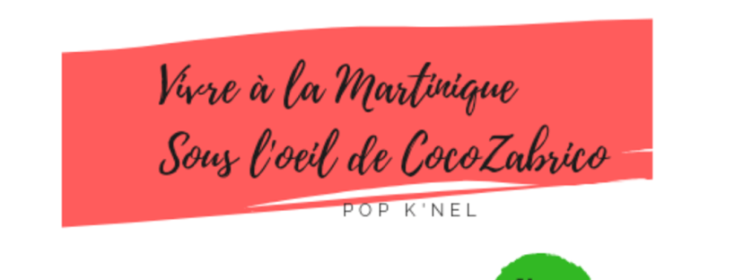Interview Popknel CocoZabrico