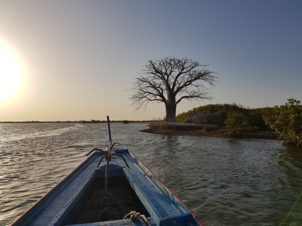 Une semaine au Sénégal Sine Saloum