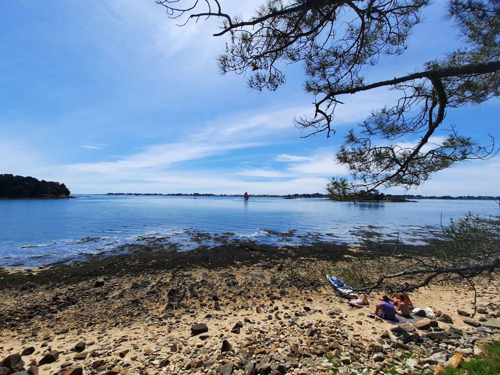 Idée balade Sept-Iles Golfe du Morbihan